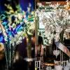 Cescaphe Vie Wedding Photos 28